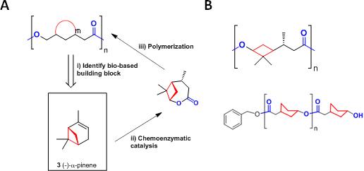 Novel polymers